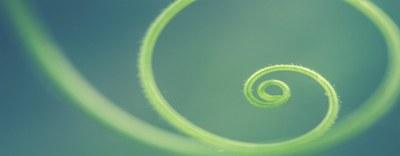 """Webinar  """"La Simbiosi Industriale come motore per lo sviluppo dell'Economia Circolare"""" - 22 giugno"""